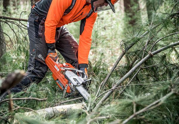 Krūmų kirtimas ir medžių rovimas – kodėl verta?
